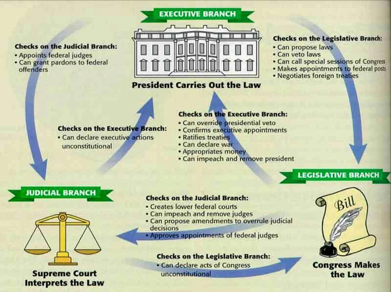 checks and balances ben graver thinglink
