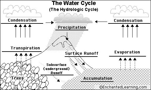 Water Cycle Diagram To Label Pdf Smartdraw Diagrams