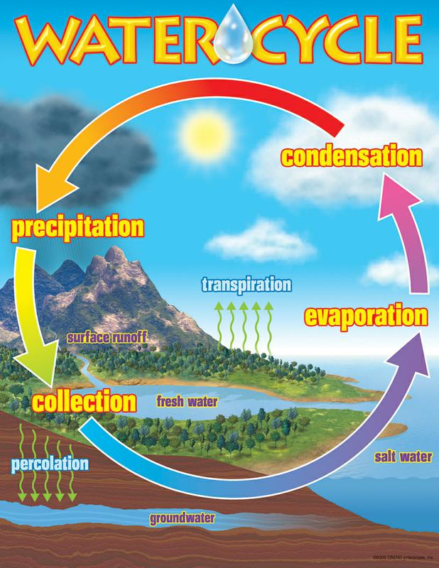 Water cycle quiz tips thinglink ccuart Gallery
