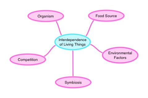 Interdependence Of Living Things Ck 12 Foundation