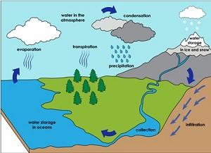 Дощ: нескінченний цикл води