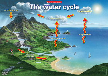 Water Cycle - ThingLink