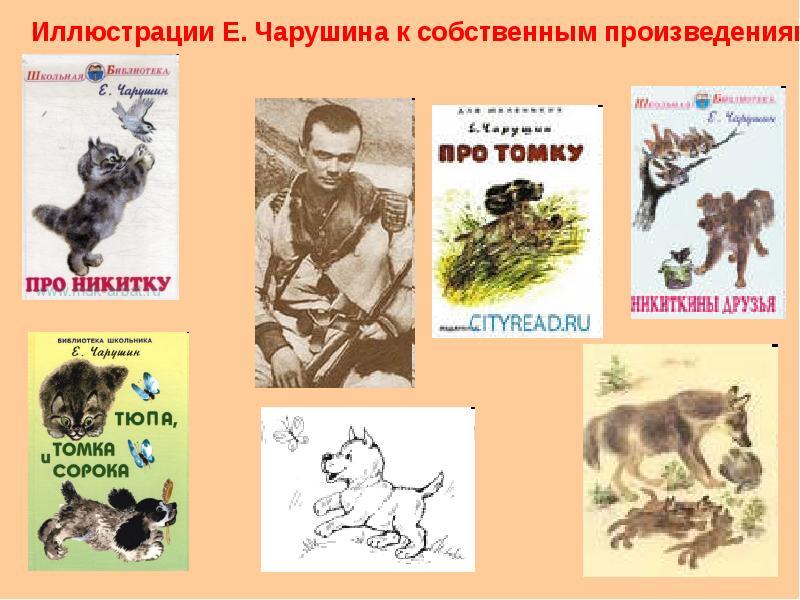Чарушин рисунки своих рассказов