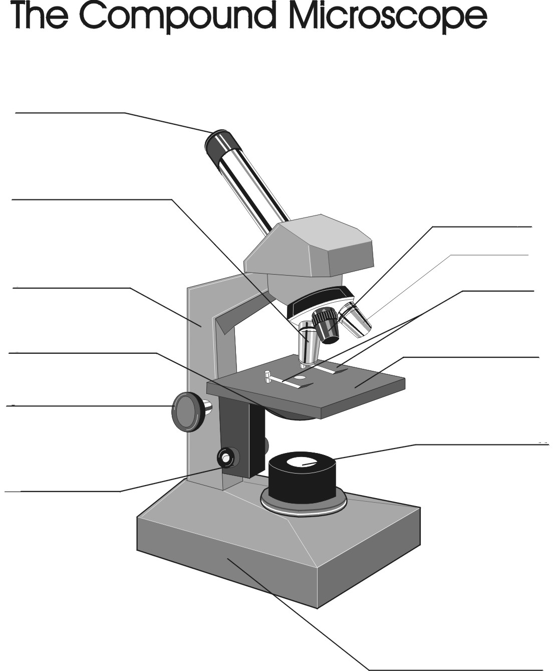 The compound microscope thinglink ccuart