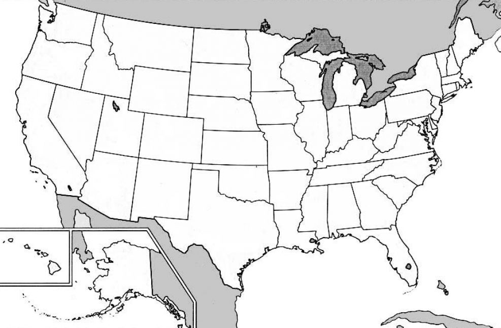 United States Map Without State Names Thefreebiedepot - United states state maps