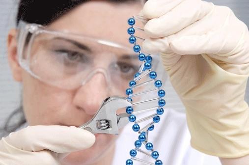 genetic engineering power of gene therapy essay