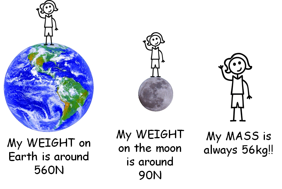 What the differences between mass and weight