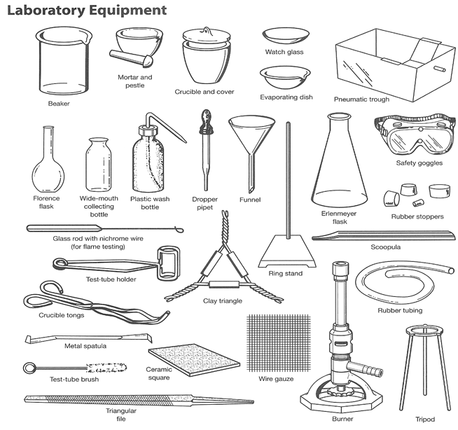 20 lovely science lab tools worksheet images. Black Bedroom Furniture Sets. Home Design Ideas