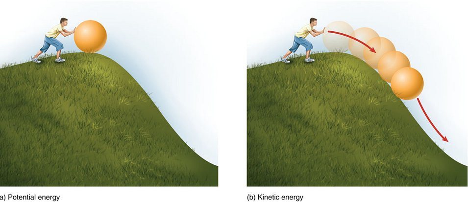 An example of potential energy is the heavy ball of a dem... - ThingLink