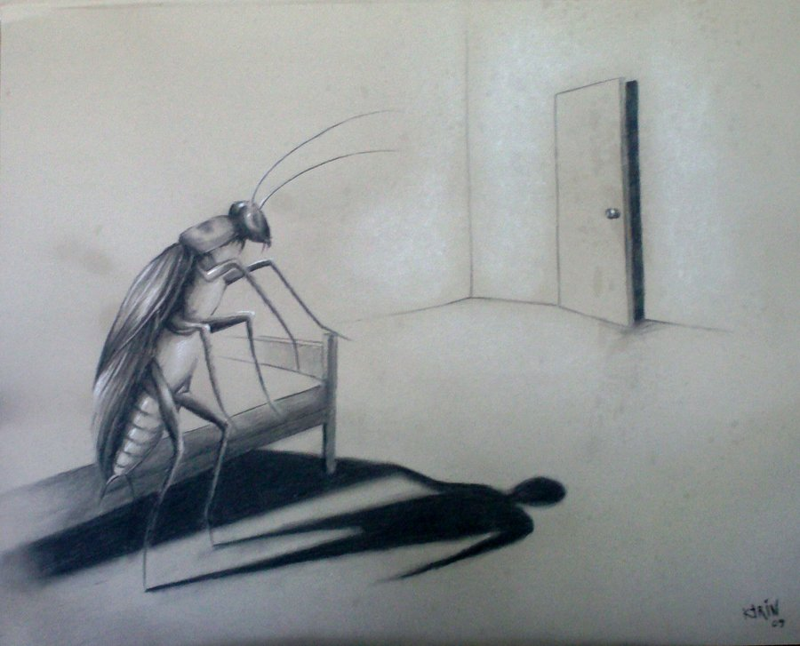 the metamorphosis by franz kafka thinglink